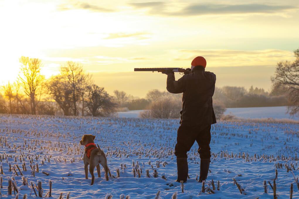 Zimski-lov